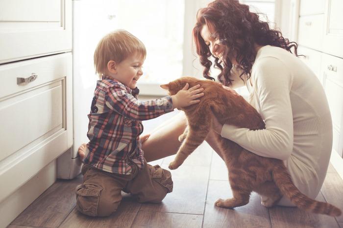 Sự đáng yêu của thú cưng cũng là bài thuốc xoa dịu thần kinh tốt