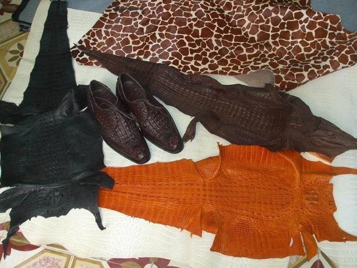 Da cá sấu thuộc đa dạng phong phú về sản phẩm và màu sắc