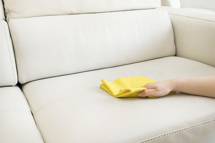 lau ghế sofa