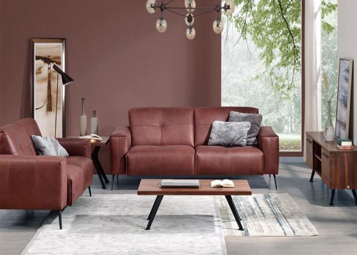 Sofa đôi màu nâu cafe