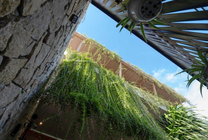 River Villa – Không gian của suy tư và chiêm nghiệm